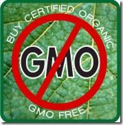 no-gmo-foods